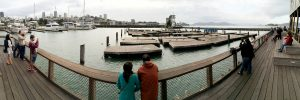Panorama San Francisco Pier 39
